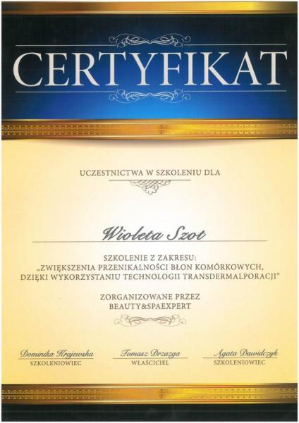certyfikat17orig